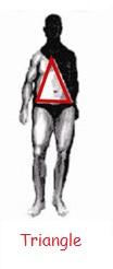 male body type